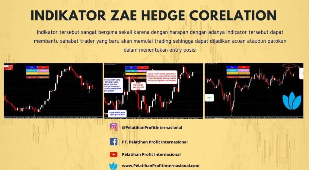Indikator Zae Hedge Corelation