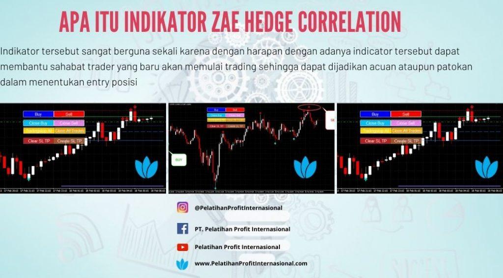 Apa Itu Indikator Zae Hedge Correlation