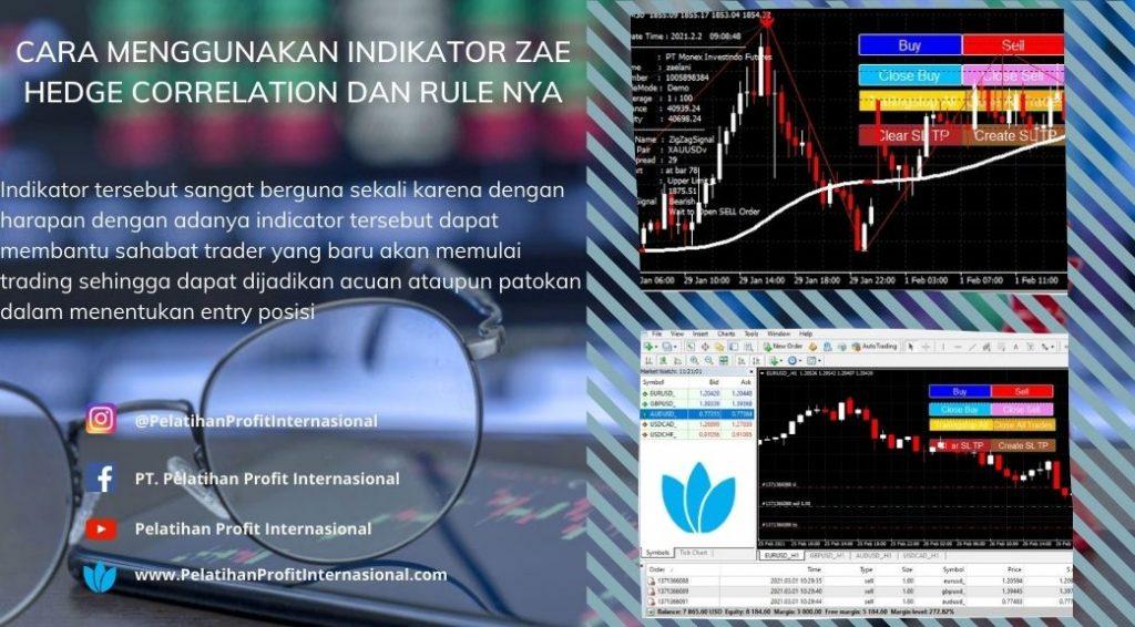 Cara Menggunakan Indikator Zae Hedge Correlation Dan Rule Nya